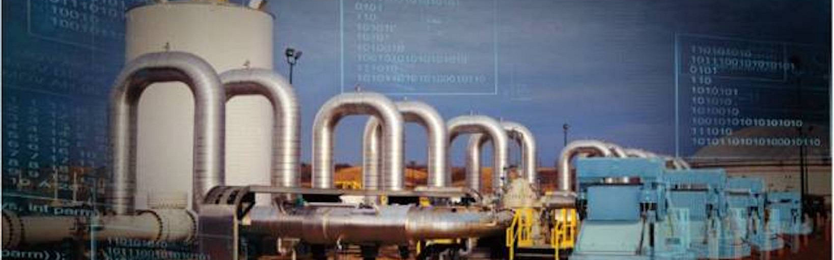 Program Working Group Digital Oil and Gas 29 June 2017